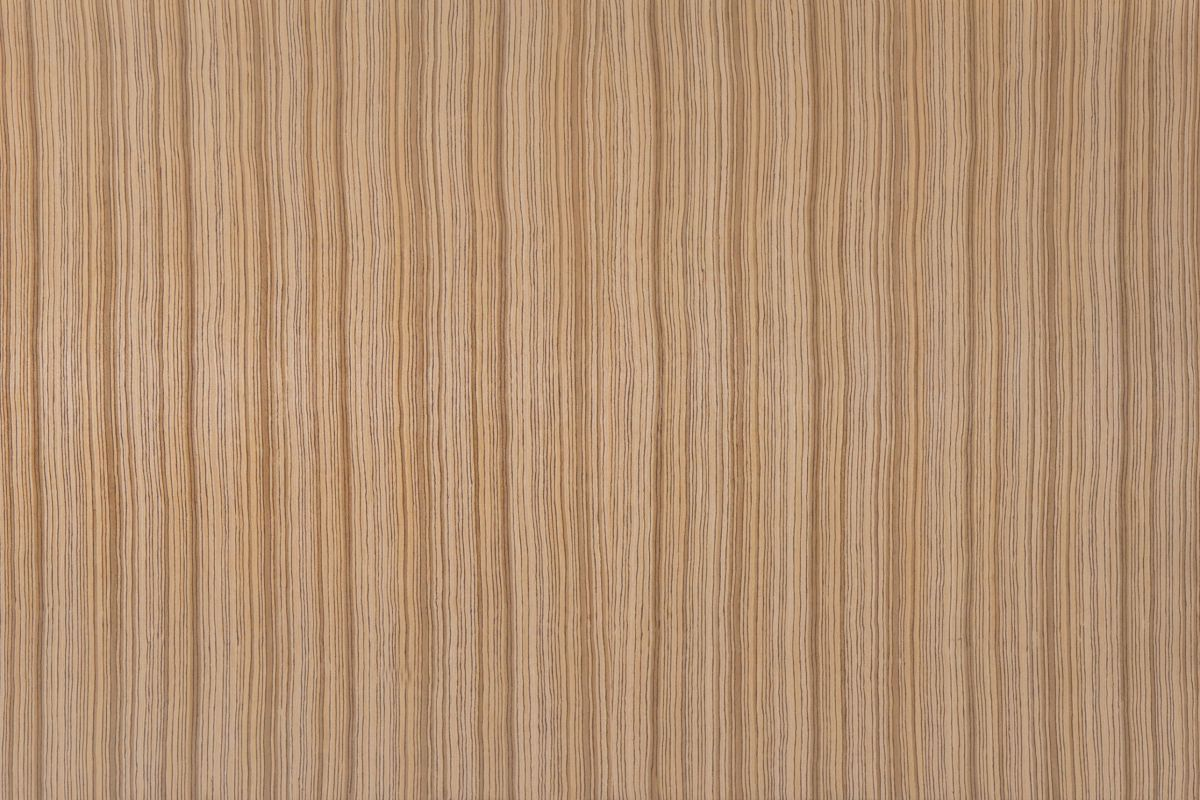 Cebrano Mallado R01